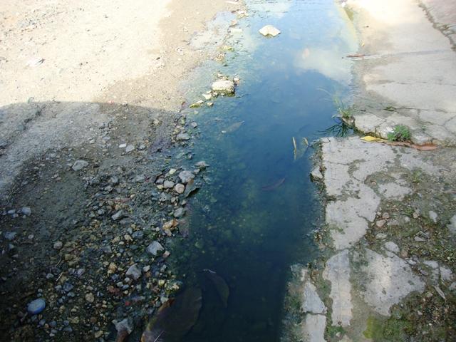 Parte baja de Puerto Plata se ahoga en aguas negras y malolientes.