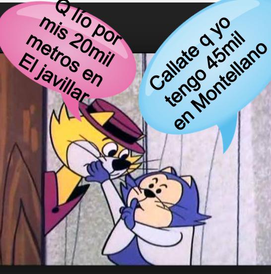 Don Gato y Benito incursionan en el negocio de «BIENES RAÍCES».